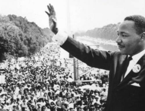MLK Volunteer