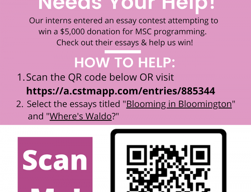 """Help My Sister's Closet win $5,000 in the """"Thankful for Our Communities"""" essay contest!"""